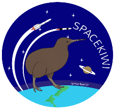 Spacekiwi